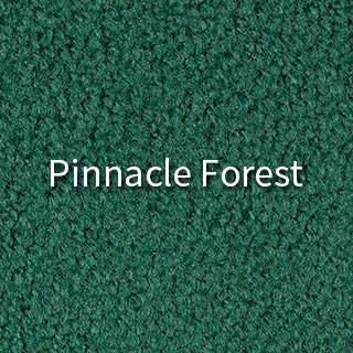 aable-rents-carpet-forest